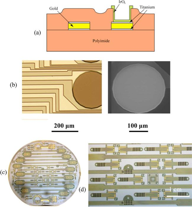 microfabricated_circuits